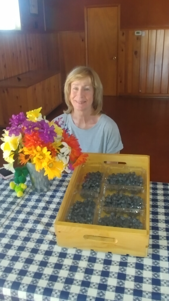 Mary's Blueberries